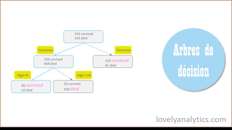 Illustration d'un modèle de machine learning : l'arbre de décision